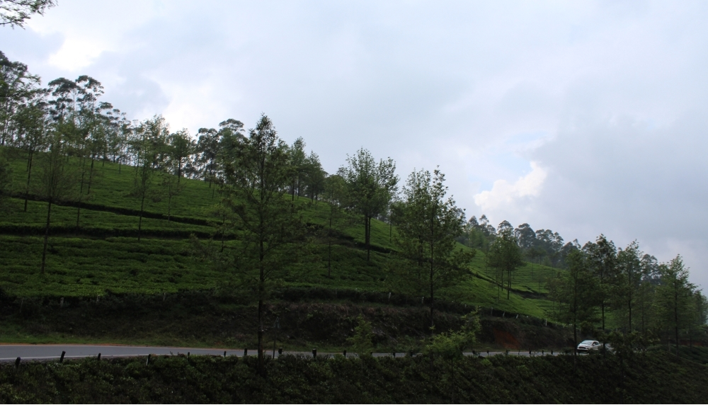 Kerala, God's Own Country – 1