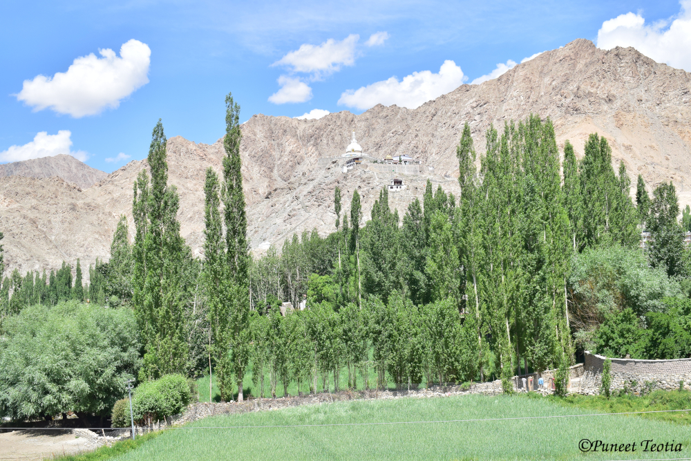 The Mesmerising Ladakh